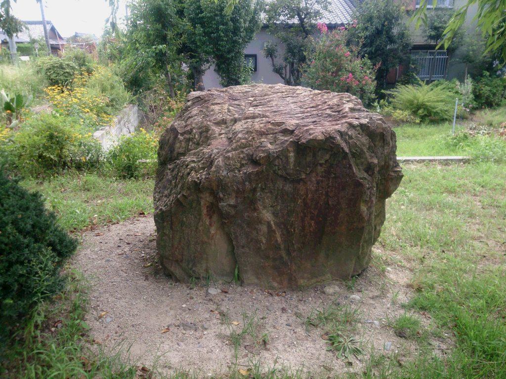 センターの岩2
